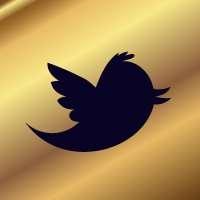 brothel-twitter